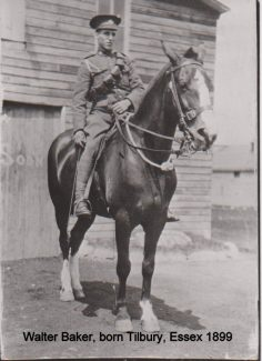 Walter Baker who served in the Canadian Army during World War I | Barbara Ferdinand