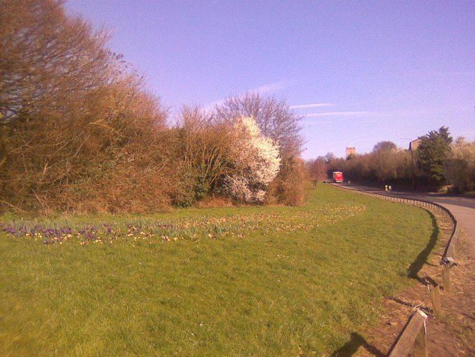 Chadwell Hill, February 2014 | John Matthews