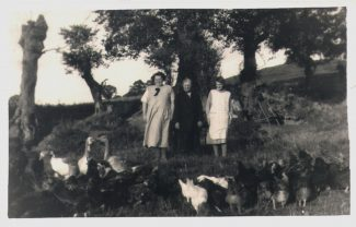 The meadow and family, 1930s | From John Smith