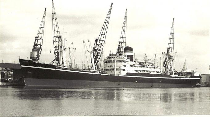 MATHURA in Docks | Jack Willis