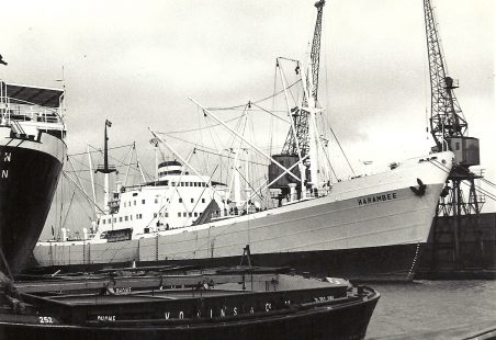 HARAMBEE in the docks